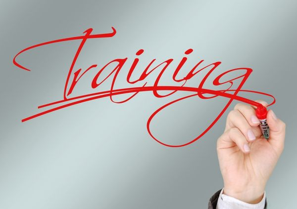 Apprentices Training Always Consult
